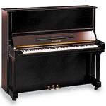 Klavier von Trautwein - Konzert